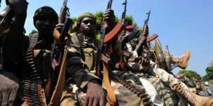 центральноафриканские повстанцы